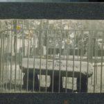 Tomb of Lady Fenwick, Saybrook