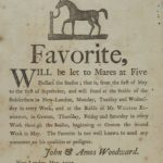 Noted stud horse favorite, New London and Groton, 1797
