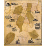 Map of the town of Plymouth, 1852