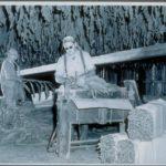 tobacco drying, East Windsor, 1948